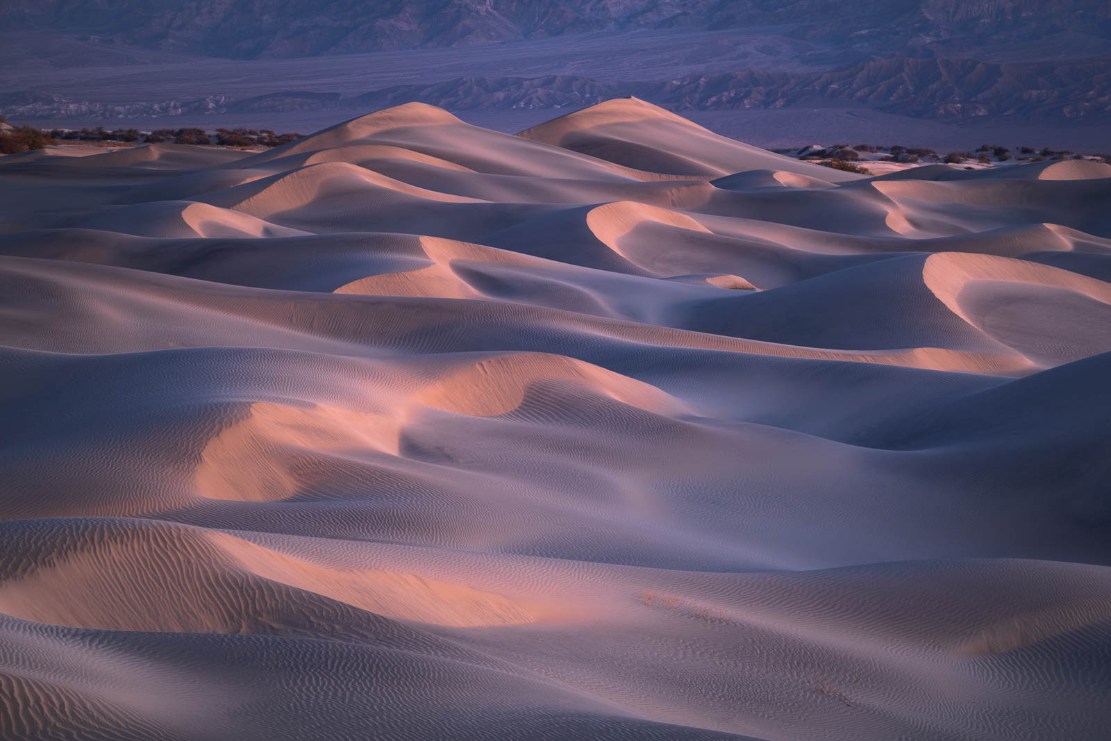 Time, Twilight, blue, california, death valley national park, landscape orientation, mesquite dunes, mojave desert, pink, sand...