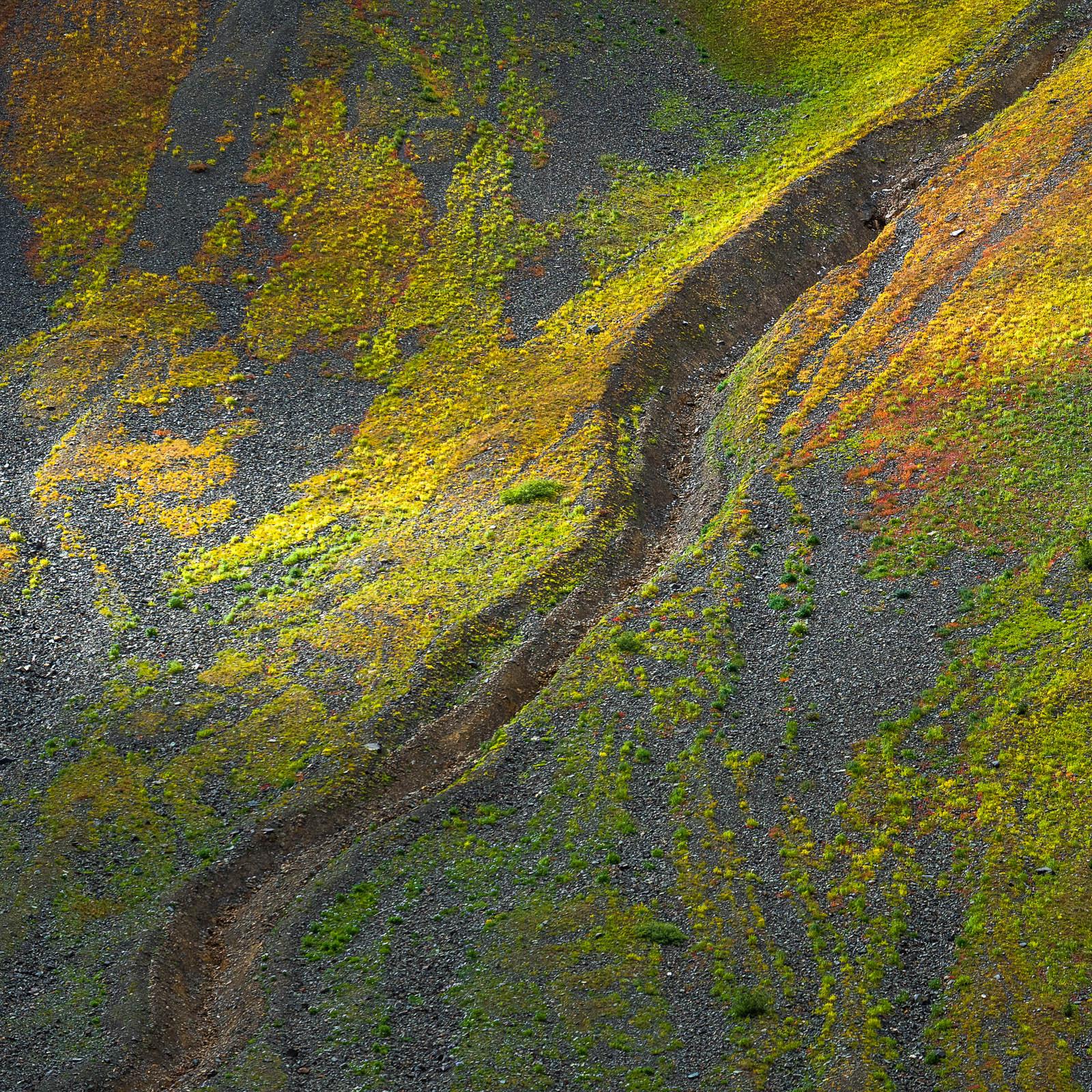 colorado, fall, green, red, rocky mountains, san juan mountains, square, yellow