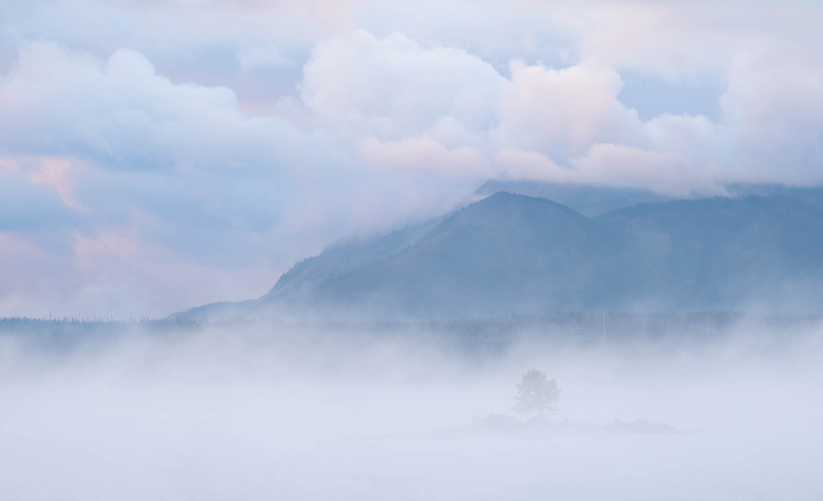 Upon seeing this island in Yellowstone years ago I knew I wanted to capture it on a foggy morning. The timing finally worked...